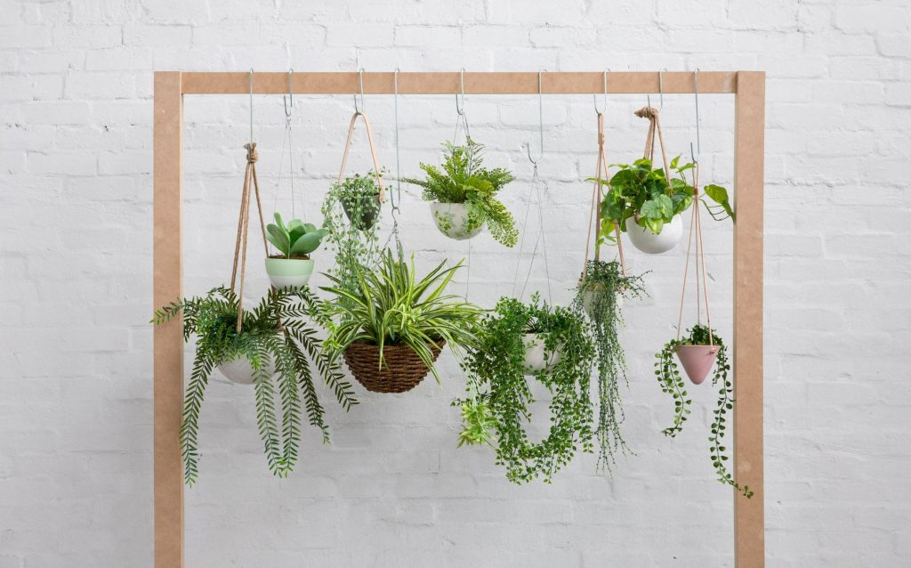 A hanging garden on a wooden construction.