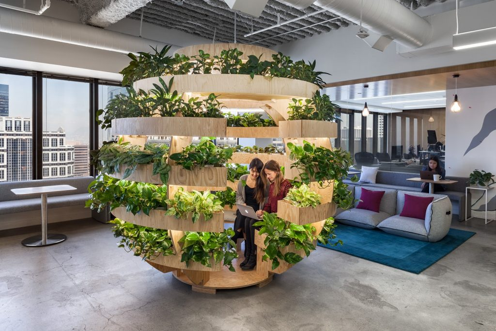 The Orb filled with greenery is sure to create a more lively atmosphere at the office.