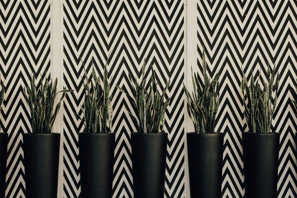 Interior Design Trends 2019 – Decor with Geometric Patterns mixed with plants details